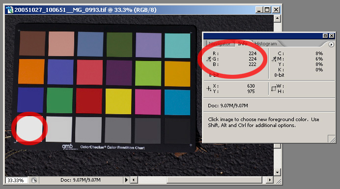 Color Matching With Adobe Camera Raw 3x