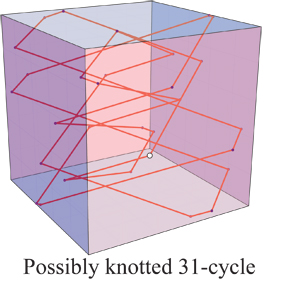 Knotted 31-cycle